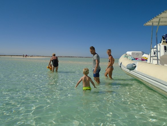 Swimming around Hurghada islands with private speedboat