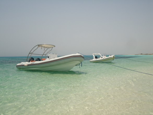 private speedboat trips in Hurghada