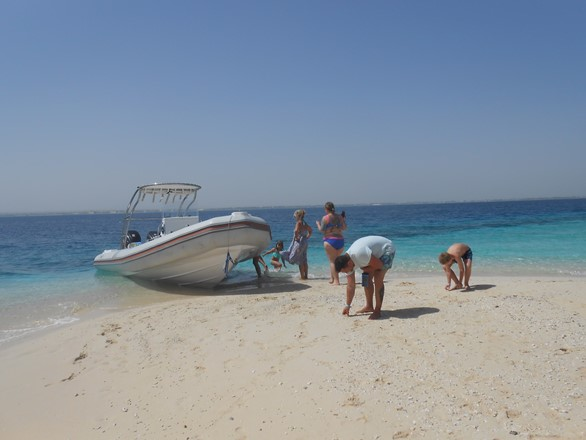 Bullet Speedboats private trips in Hurghada